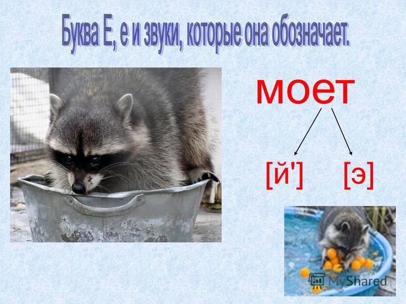 моет [й'][э][э]