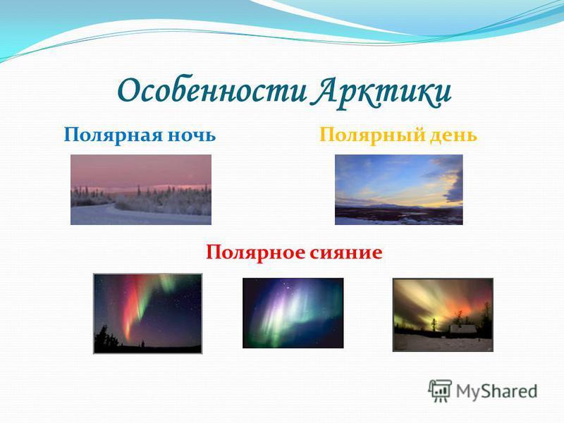 Особенности Арктики Полярная ночь Полярный день Полярное сияние