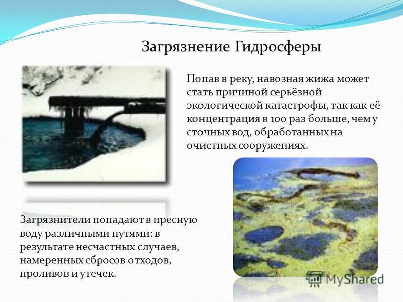 Загрязнение Гидросферы Загрязнители попадают в пресную воду различными путями: в результате несчастных случаев, намеренных сбросов отходов, проливов и утечек. Попав в реку, навозная жижа может стать причиной серьёзной экологической катастрофы, так ка