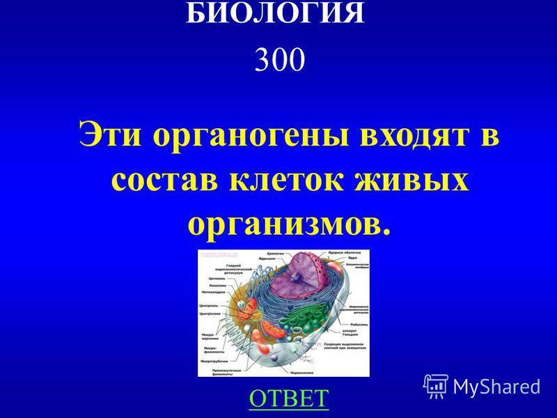НАЗАДВЫХОД Деревья. 200