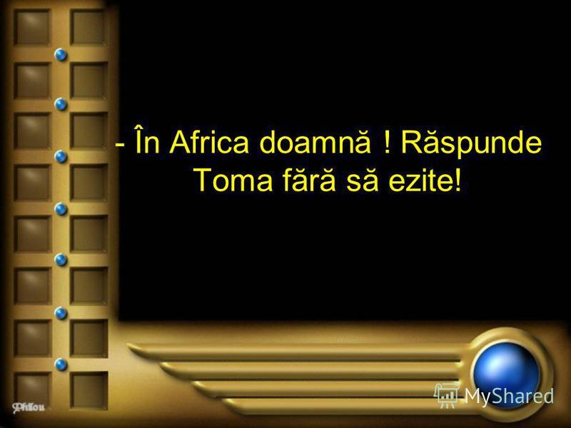 - În Africa doamnă ! Răspunde Toma fără să ezite!