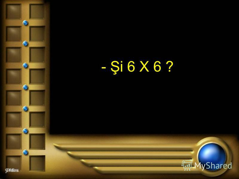 - Şi 6 X 6 ?