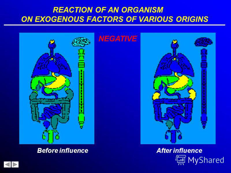REACTION OF AN ORGANISM ON EXOGENOUS FACTORS OF VARIOUS ORIGINS Before influence POSITIVE After influence
