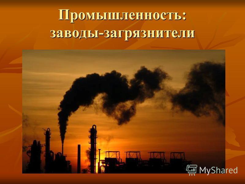 Промышленность: заводы-загрязнители