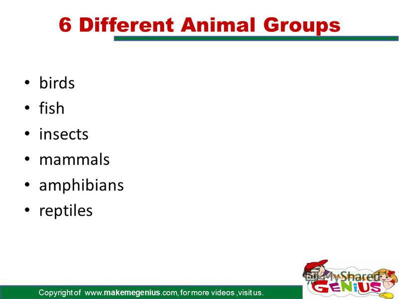 Copyright of www.makemegenius.com, for more videos,visit us. All About Animals