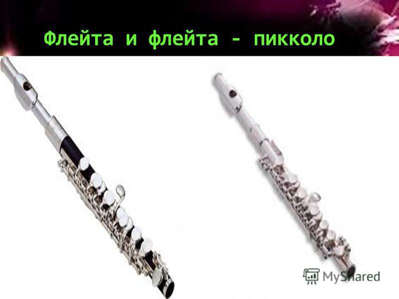 Флейта и флейта - пикколо