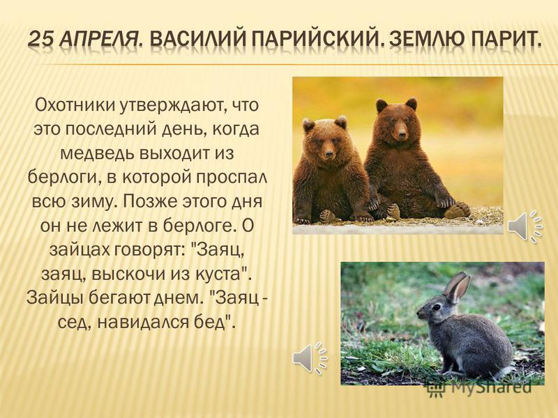 Охотники утверждают, что это последний день, когда медведь выходит из берлоги, в которой проспал всю зиму. Позже этого дня он не лежит в берлоге. О зайцах говорят: Заяц, заяц, выскочи из куста. Зайцы бегают днем. Заяц - сед, навидался бед.
