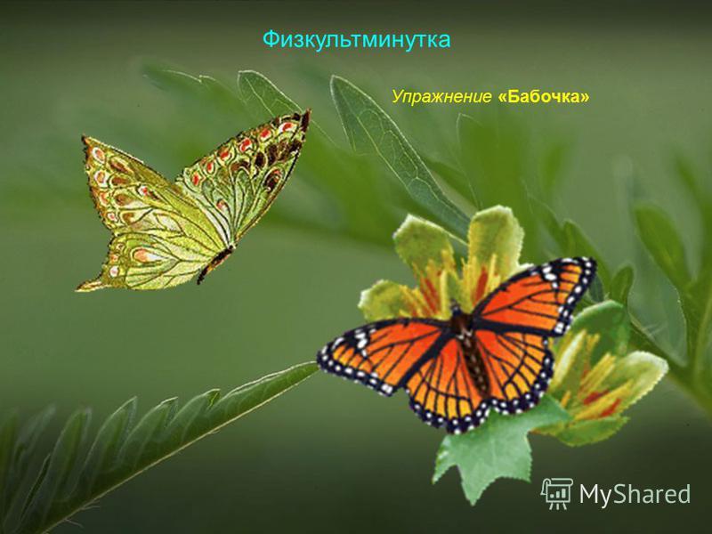 Физкультминутка Упражнение «Бабочка»