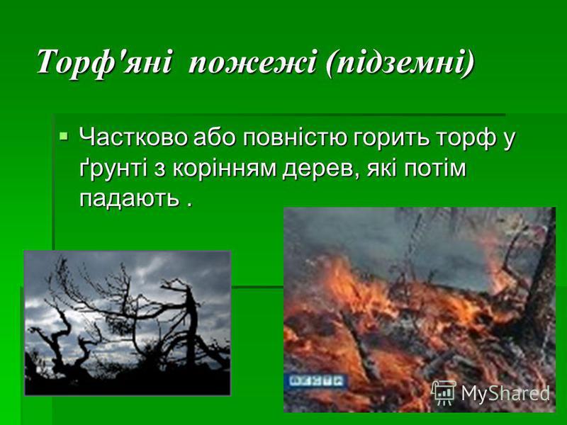 Торф'яні пожежі (підземні) Частково або повністю горить торф у ґрунті з корінням дерев, які потім падають. Частково або повністю горить торф у ґрунті з корінням дерев, які потім падають.