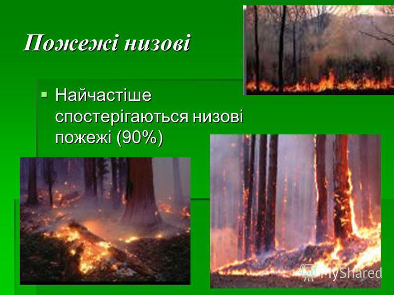 Пожежі низові Найчастіше спостерігаються низові пожежі (90%) Найчастіше спостерігаються низові пожежі (90%)