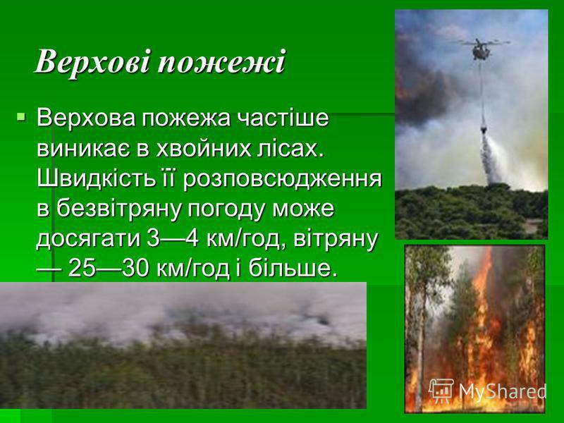Верхові пожежі Верхова пожежа частіше виникає в хвойних лісах. Швидкість її розповсюдження в безвітряну погоду може досягати 34 км/год, вітряну 2530 км/год і більше.