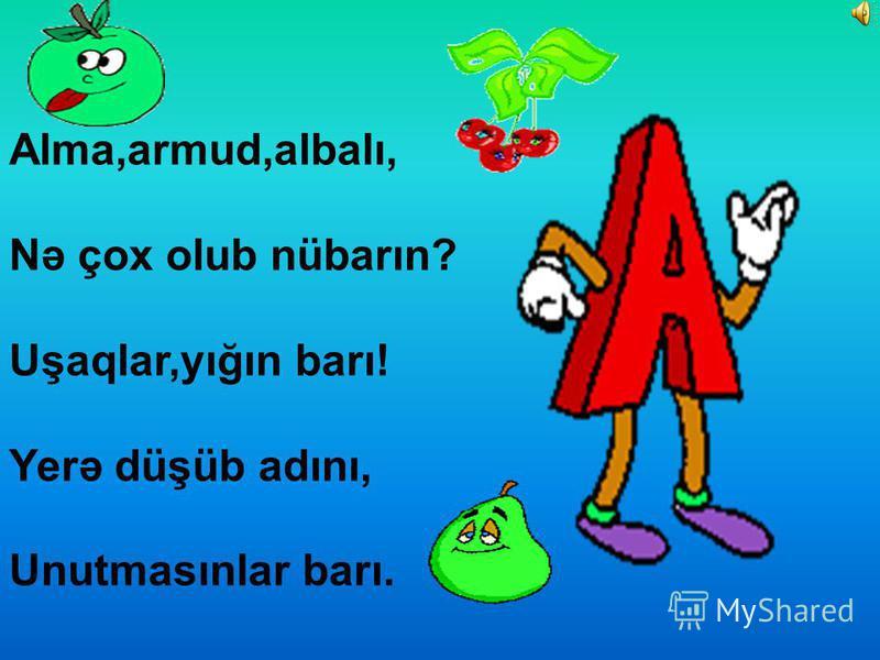 Alma,armud,albalı, Nə çox olub nübarın? Uşaqlar,yığın barı! Yerə düşüb adını, Unutmasınlar barı.