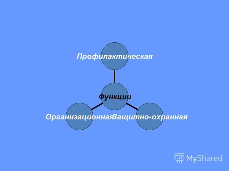 Функции Профилактическая Защитно-охранная Организационная