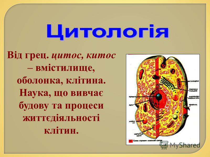 Від грец. цитос, китос – вмістилище, оболонка, клітина. Наука, що вивчає будову та процеси життєдіяльності клітин.