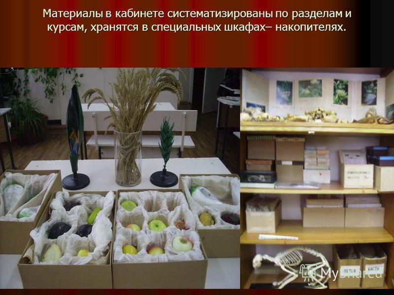 Материалы в кабинете систематизированы по разделам и курсам, хранятся в специальных шкафах– накопителях.