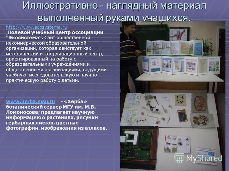 Иллюстративно - наглядный материал выполненный руками учащихся. http://www.ecosystema.ru Полевой учебный центр Ассоциации