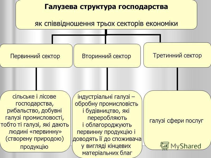 Галузева структура господарства як співвідношення трьох секторів економіки Первинний сектор сільське і лісове господарства, рибальство, добувні галузі промисловості, тобто ті галузі, які дають людині «первинну» (створену природою) продукцію Вторинний