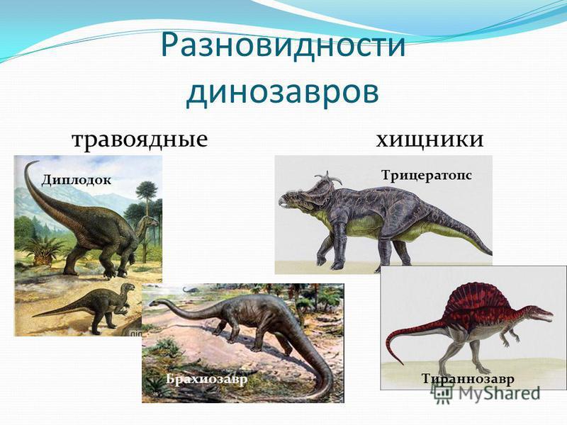 225 млн. лет назад Эпоха динозавров Юрский период