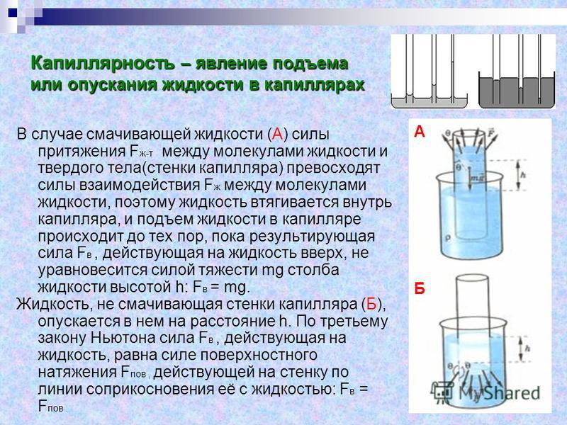 Капиллярность – явление подъема или опускания жидкости в капиллярах В случае смачивающей жидкости (А) силы притяжения F ж-т между молекулами жидкости и твердого тела(стенки капилляра) превосходят силы взаимодействия F ж между молекулами жидкости, поэ