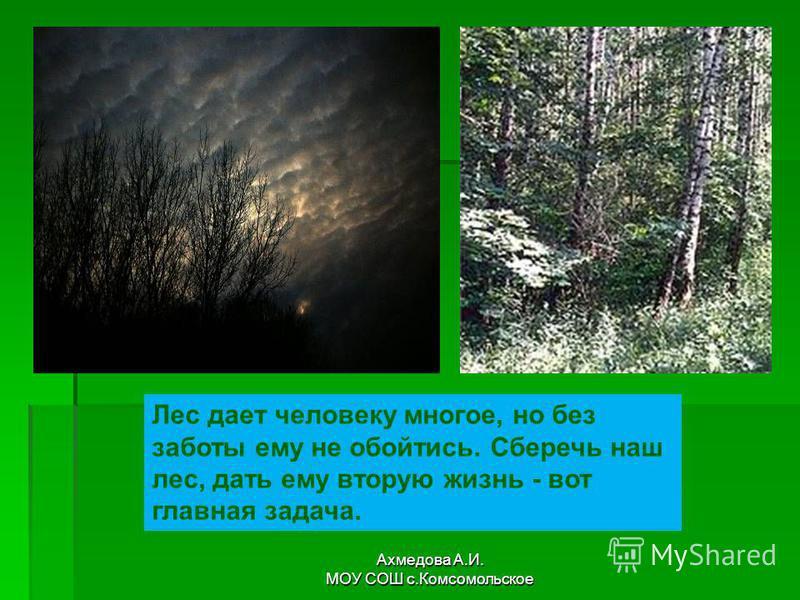 Лес дает человеку многое, но без заботы ему не обойтись. Сберечь наш лес, дать ему вторую жизнь - вот главная задача. Ахмедова А.И. МОУ СОШ с.Комсомольское