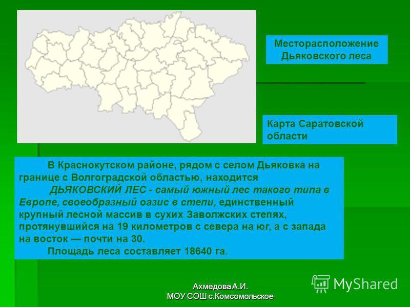 Месторасположение Дьяковского леса Карта Саратовской области В Краснокутском районе, рядом с селом Дьяковка на границе с Волгоградской областью, находится ДЬЯКОВСКИЙ ЛЕС - самый южный лес такого типа в Европе, своеобразный оазис в степи, единственный