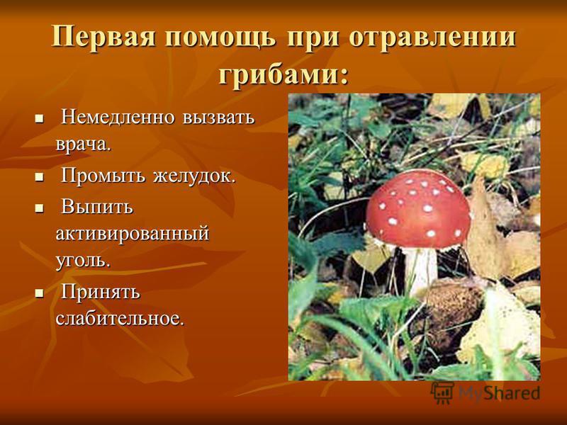 Первая помощь при отравлении грибами: Немедленно вызвать врача. Немедленно вызвать врача. Промыть желудок. Промыть желудок. Выпить активированный уголь. Выпить активированный уголь. Принять слабительное. Принять слабительное.