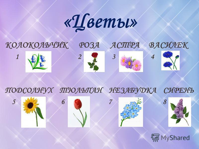 «Цветы» КОЛОКОЛЬЧИК РОЗА АСТРА ВАСИЛЕК 1 2 3 4 ПОДСОЛНУХ ТЮЛЬПАН НЕЗАБУДКА СИРЕНЬ 5 6 7 8