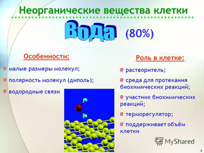 6 Неорганические вещества клетки (80%) Особенности: малые размеры молекул; полярность молекул (диполь); водородные связи Роль в клетке: растворитель; среда для протекания биохимических реакций; участник биохимических реакций; терморегулятор; поддержи