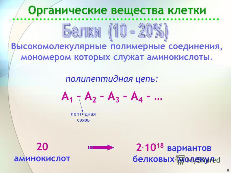 8 Органические вещества клетки Высокомолекулярные полимерные соединения, мономером которых служат аминокислоты. 20 аминокислот 2. 10 18 вариантов белковых молекул полипептидная цепь: А 1 – А 2 – А 3 – А 4 - … пептидная связь