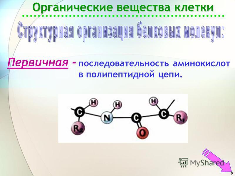 9 Органические вещества клетки Первичная - последовательность аминокислот в полипептидной цепи.