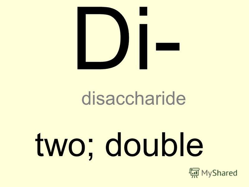 Di- two; double disaccharide