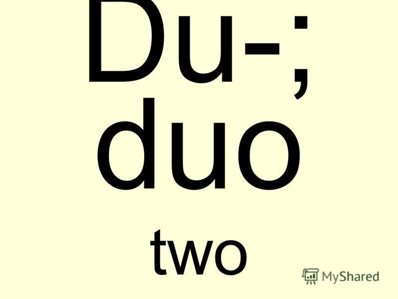 Du-; duo two