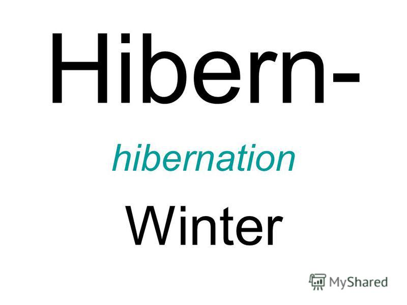 Hibern- hibernation Winter