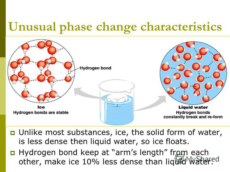 Unusual phase change characteristics Unlike most substances, ice, the solid form of water, is less dense then liquid water, so ice floats. Hydrogen bond keep at arms length from each other, make ice 10% less dense than liquid water.