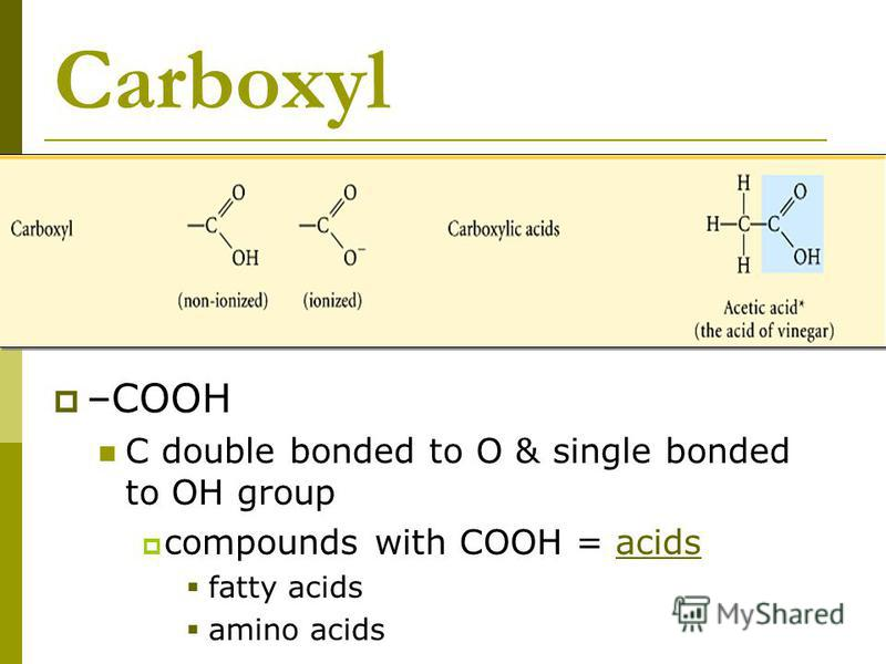 Carboxyl –COOH C double bonded to O & single bonded to OH group compounds with COOH = acids fatty acids amino acids