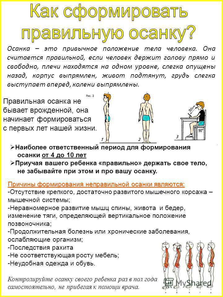 Осанка – это привычное положение тела человека. Она считается правильной, если человек держит голову прямо и свободно, плечи находятся на одном уровне, слегка опущены назад, корпус выпрямлен, живот подтянут, грудь слегка выступает вперед, колени выпр