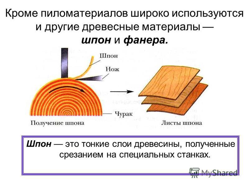 Распиловка древесины После вырубки деревья очищают от корней и кроны, разрезают специальными пилами на пиломатериалы: бруски, доски, брусья и др.