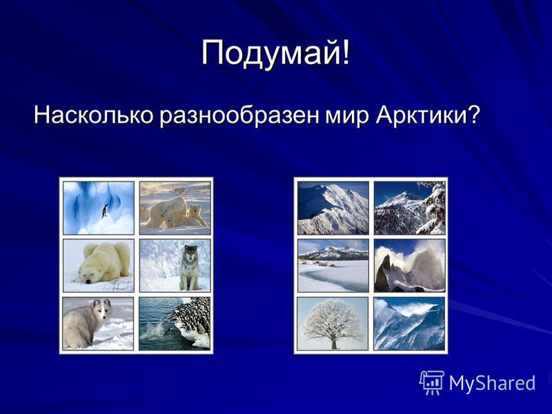 Подумай! Насколько разнообразен мир Арктики?