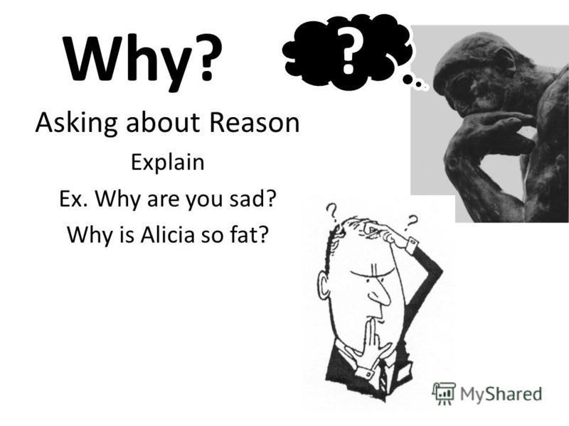 Why? Asking about Reason Explain Ex. Why are you sad? Why is Alicia so fat? ?