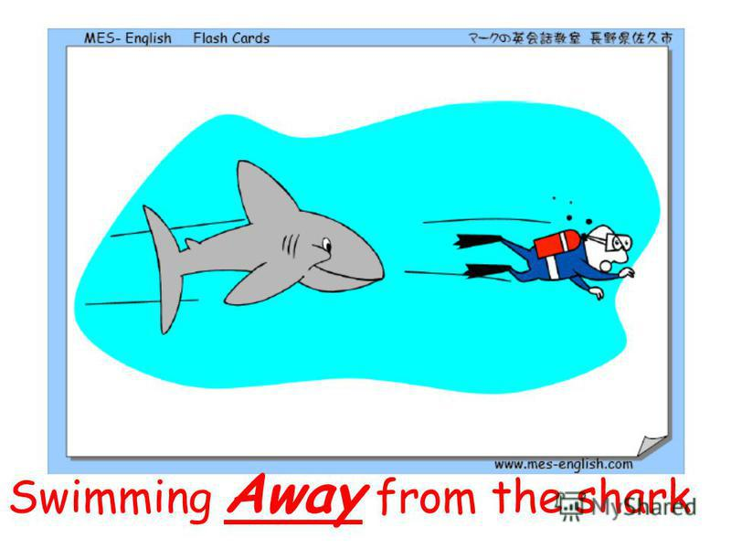 Swimming Away from the shark
