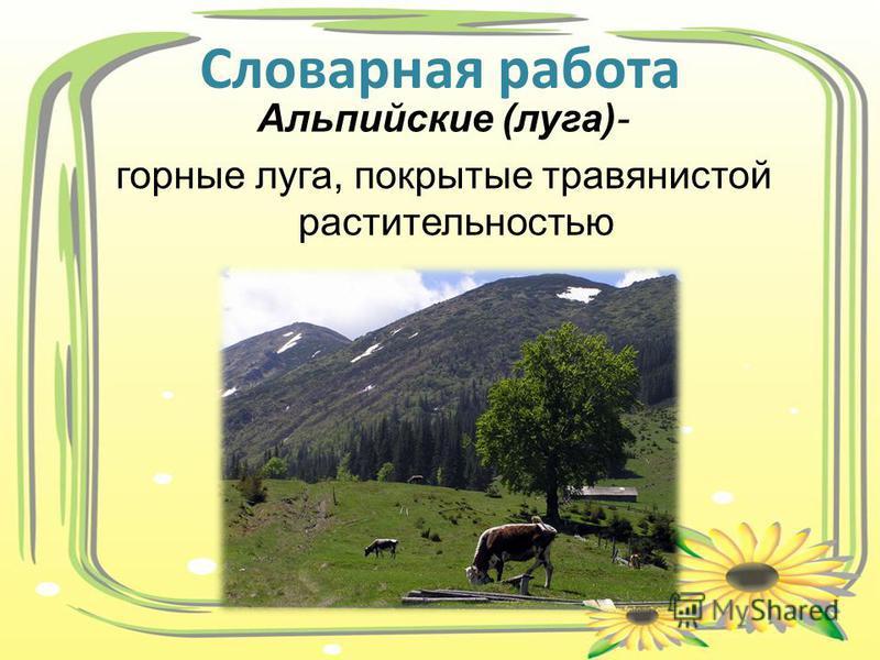 Альпийские (луга)- горные луга, покрытые травянистой растительностью Словарная работа