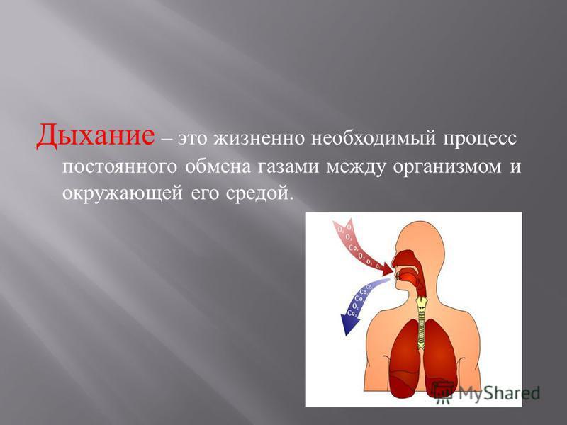 Дыхание – это жизненно необходимый процесс постоянного обмена газами между организмом и окружающей его средой.