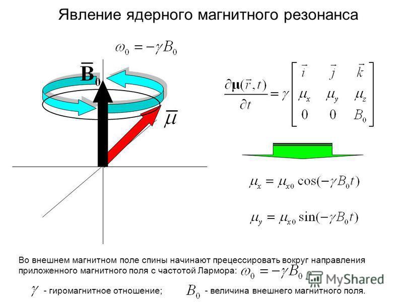 Явление ядерного магнитного резонанса Во внешнем магнитном поле спины начинают прецессировать вокруг направления приложенного магнитного поля с частотой Лармора: - гиромагнитное отношение;- величина внешнего магнитного поля.