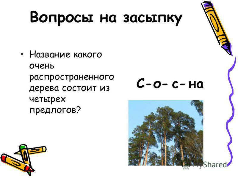 Название какого очень распространенного дерева состоит из четырех предлогов? С-о-с-на Вопросы на засыпку