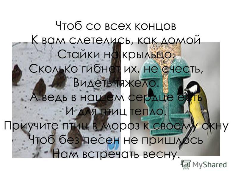 Покормите птиц зимой, Чтоб со всех концов К вам слетелись, как домой Стайки на крыльцо. Сколько гибнет их, не счесть, Видеть тяжело. А ведь в нашем сердце есть И для птиц тепло. Приучите птиц в мороз к своему окну Чтоб без песен не пришлось Нам встре