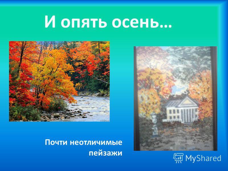 И опять осень… Почти неотличимые пейзажи