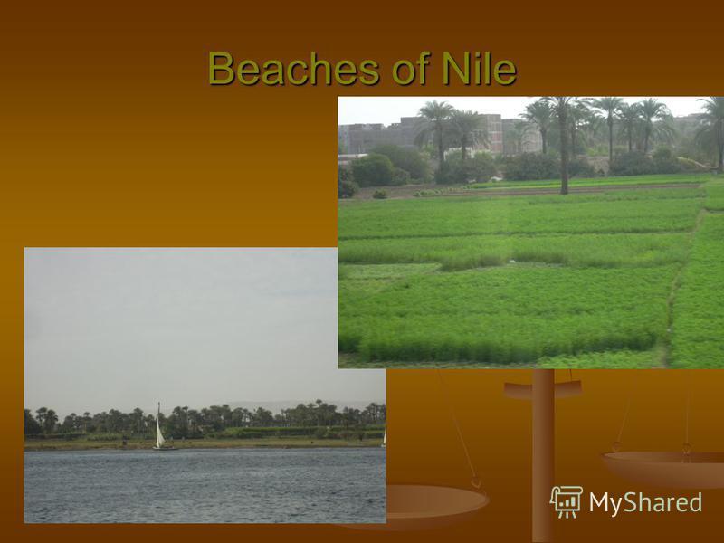 Beaches of Nile