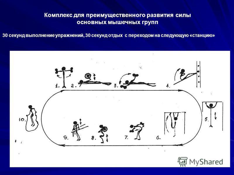 Комплекс для преимущественного развития силы основных мышечных групп 30 секунд выполнение упражнений, 30 секунд отдых с переходом на следующую «станцию»