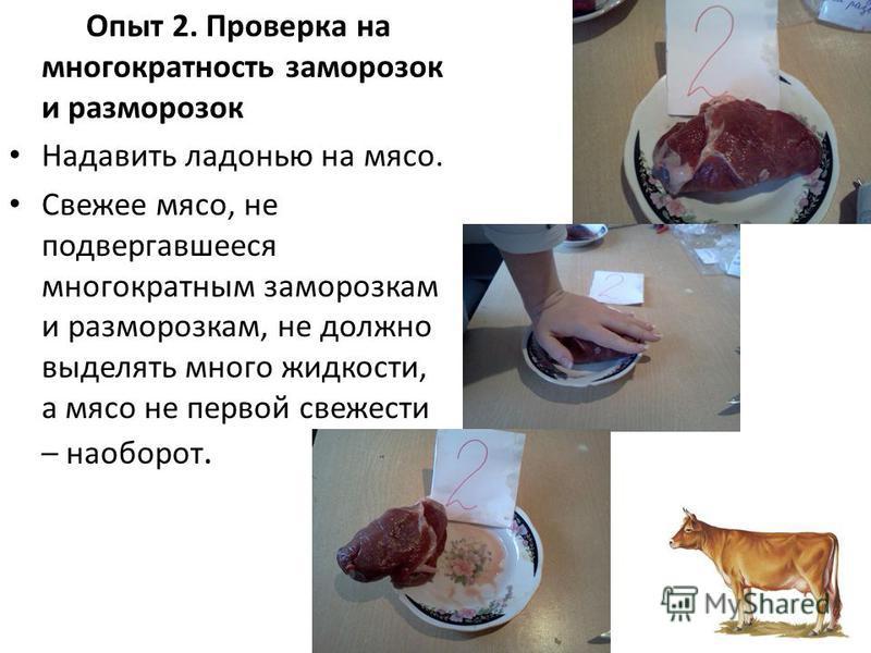 Опыт 2. Проверка на многократность заморозок и разморозок Надавить ладонью на мясо. Свежее мясо, не подвергавшееся многократным заморозкам и разморозкам, не должно выделять много жидкости, а мясо не первой свежести – наоборот.