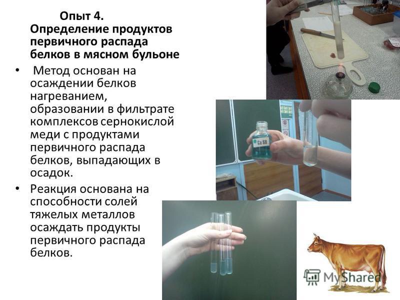 Опыт 4. Определение продуктов первичного распада белков в мясном бульоне Метод основан на осаждении белков нагреванием, образовании в фильтрате комплексов сернокислой меди с продуктами первичного распада белков, выпадающих в осадок. Реакция основана
